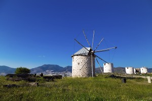 Windmills of Bodrum