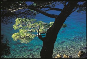 Mjlet Island Crotia
